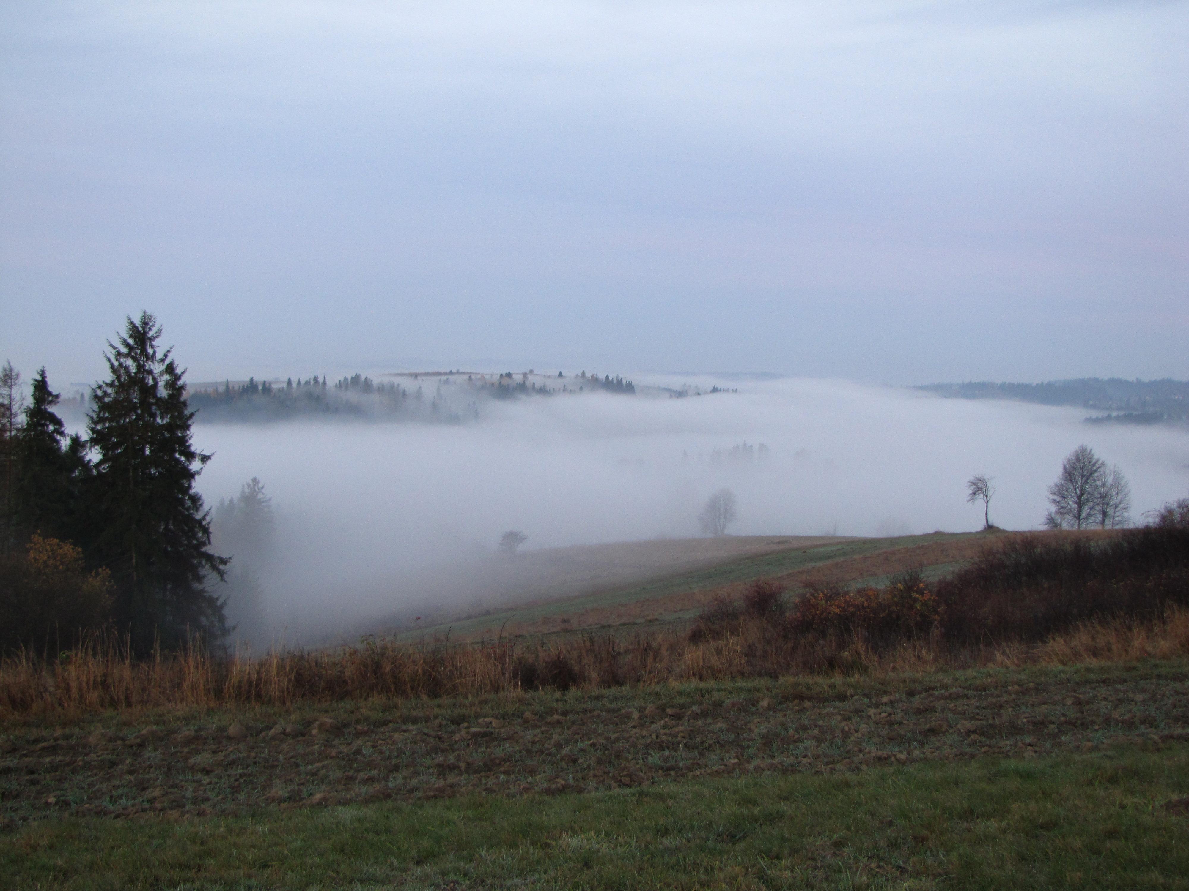 Mgła dolinna zalegająca w kotlinie Orawsko-Nowotarskiej (październik 2013, fot. S. Wypych)
