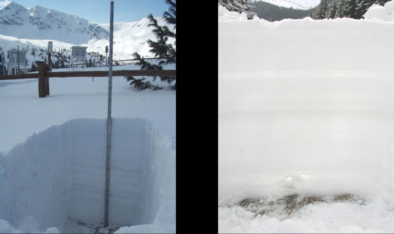 Profil pokrywy śnieżnej z widocznymi poziomami/warstwami o zróżnicowanych właściwościach fizyko-chemicznych (fot. M. Karzyński, A. Fiema)