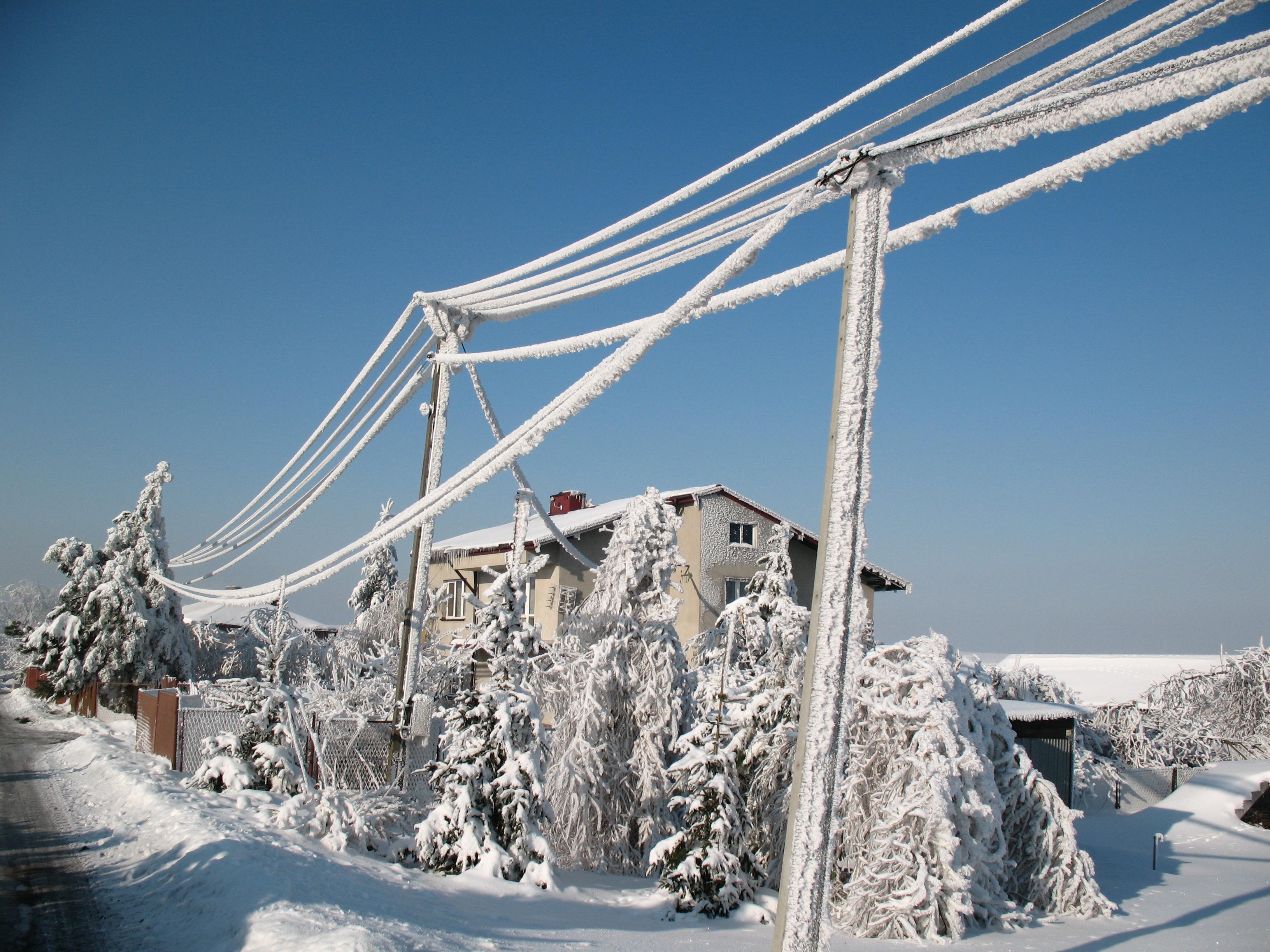 Linie energetyczne obciążone osadem szadzi (fot. S.Wypych)